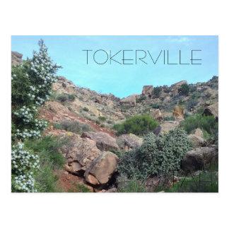 Carte Postale Tokerville UTAH