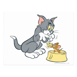 Carte Postale Tom et Jerry alimentent le chat