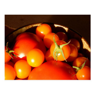 Carte Postale Tomates fraîches