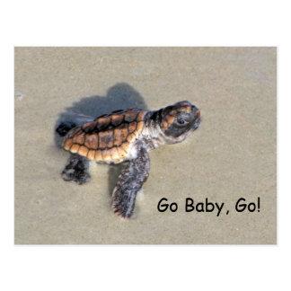 Carte Postale Tortue de mer de bébé, juste hachée