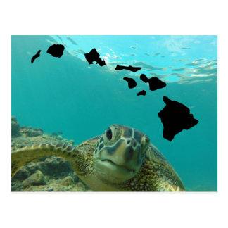 Carte Postale Tortue de mer verte d'Hawaï