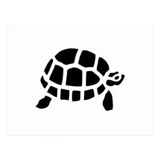 Carte Postale Tortue de tortue