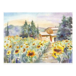 Carte Postale Tournesols en Provence