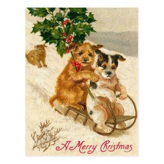 Carte Postale Traîneau de chien de Noël