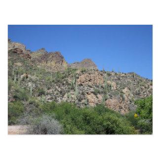 Carte Postale Traînée historique d'Apache