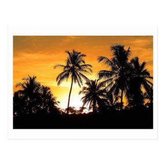 Carte Postale Trancoso Bahia Plage des Cocotiers