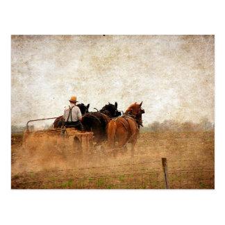 Carte Postale Travaux sur le terrain actionnés par cheval