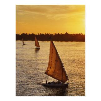Carte Postale Trois falukas avec des touristes sur le Nil à