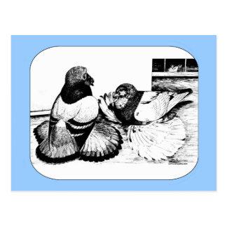 Carte Postale Trompettistes anglais