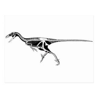 Carte Postale Troodon
