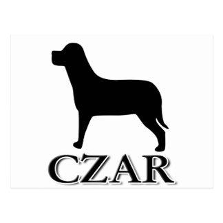 Carte Postale Tsar de chien