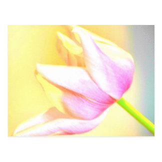 Carte Postale Tulipe pointillée