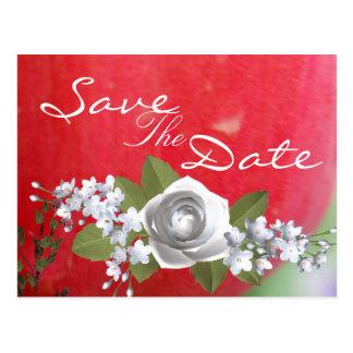 Carte Postale Tulipe rouge rouge