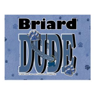 Carte Postale TYPE de Briard
