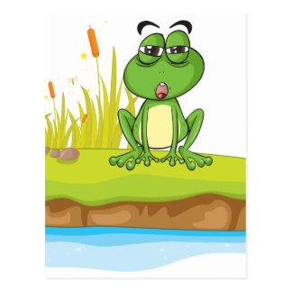Carte Postale Une grenouille et une eau