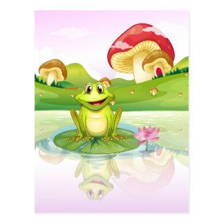 Carte Postale Une grenouille observant sa réflexion de l'eau