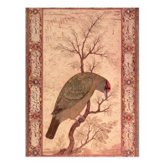 Carte Postale Une période de Barbet Jahangir, Mughal, 1615
