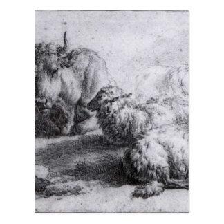 Carte Postale Une vache et trois moutons par Adriaen van de