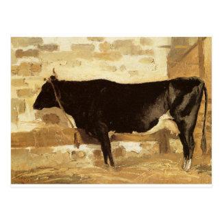 Carte Postale Vache dans un stable (également connu comme vache