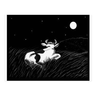 Carte Postale Vache de minuit