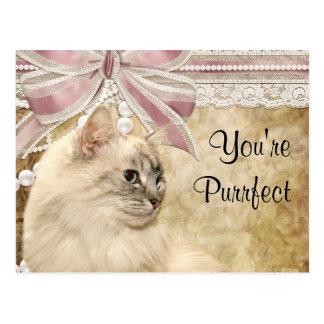 Carte Postale Valentine de minou de Purrfect