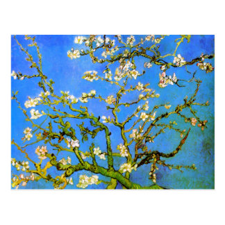 Carte Postale Van Gogh : Branches d'arbre se développantes