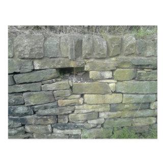 Carte Postale Vieux mur, pierre, briques
