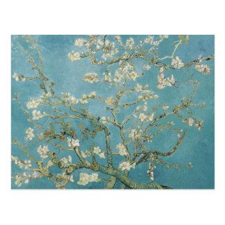 Carte Postale Vincent van Gogh, fleurs d'amande