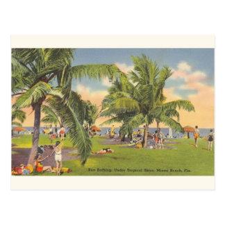Carte postale vintage de se baigner de Sun Miami
