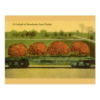Carte postale vintage de voyage de fraises de la