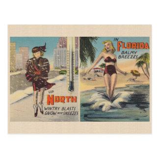 Carte postale vintage d'hiver de la Floride