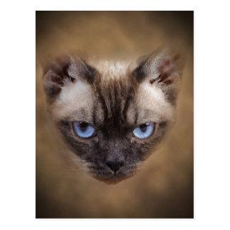 Carte Postale Visage de chat de Devon Rex