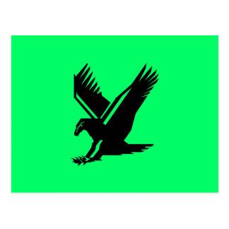 Carte Postale vol d'aigle