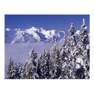 Carte Postale WA, NP olympique, chaîne de montagne olympique,