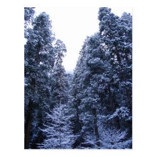 Carte Postale Yosemite pendant l'hiver