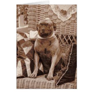 Carte pour notes de chien de carlin