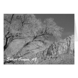 Carte pour notes de Ridge B/W d'Acropole de canyon