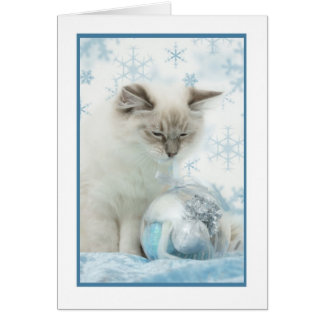 carte pour notes d'hiver de ragdoll