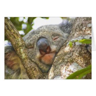 Carte pour notes d'ours de koala