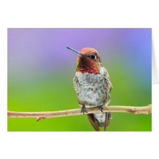Carte pour notes horizontal de colibri