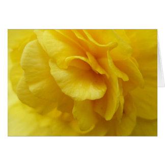 Carte pour notes jaune de bégonia