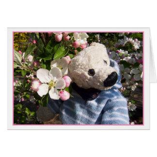 Carte printemps teddybeary