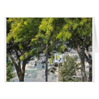 Carte Promenade d'animal familier avec des arbres