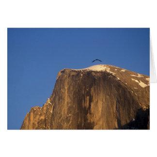 Carte Raven au-dessus de demi de dôme, parc national de