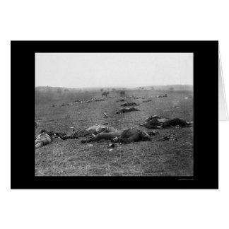 Carte Récolte de la mort à Gettysburg, PA 1863