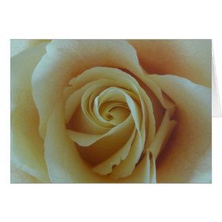 Carte Rêve de rose