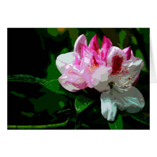Carte Rhododendron blanc et rose