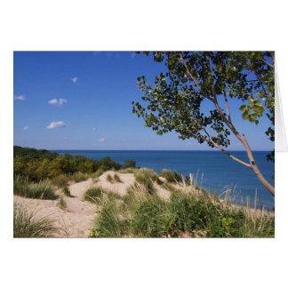 Carte Rive d'un lac de ressortissant de dunes de