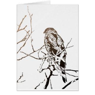 Carte Roosting le faucon
