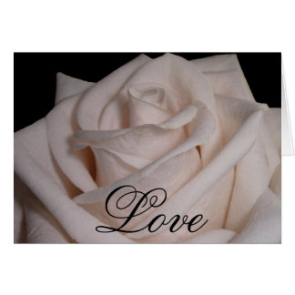 Carte Rose blanc